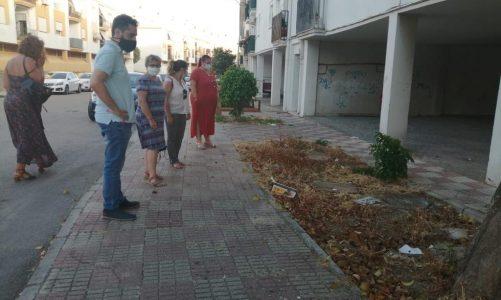 El PSOE exige atención para las 200 viviendas ante el abandono que sigue sufriendo la zona