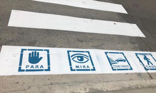 Los socialistas celebran el pintado de pictogramas en los primeros pasos peatonales del municipio